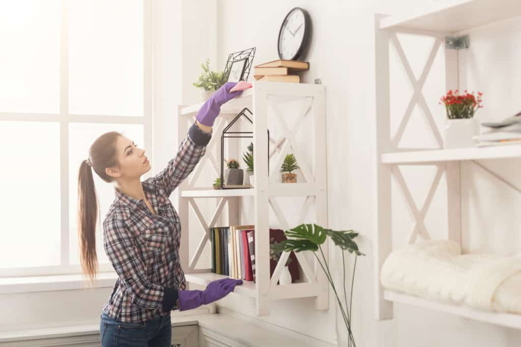 move-out or move-in cleaning